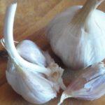 Pěstujeme český česnek pro zdraví
