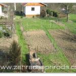 Jak vylepšit půdu na zahradě
