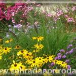 Plánování okrasné zahrady