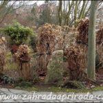 Zazimování okrasné zahrady