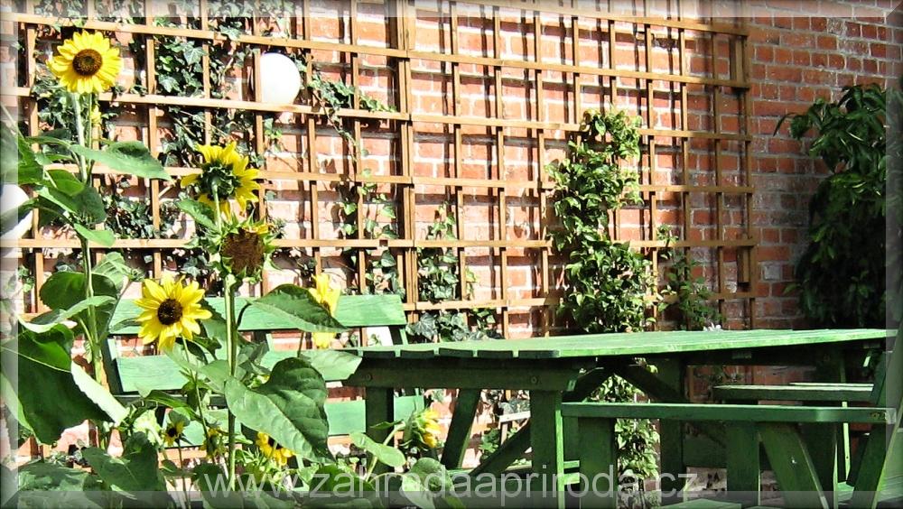 opěry pro rostliny